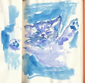 cat 17, Plouf