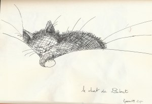 le chat de Dubout