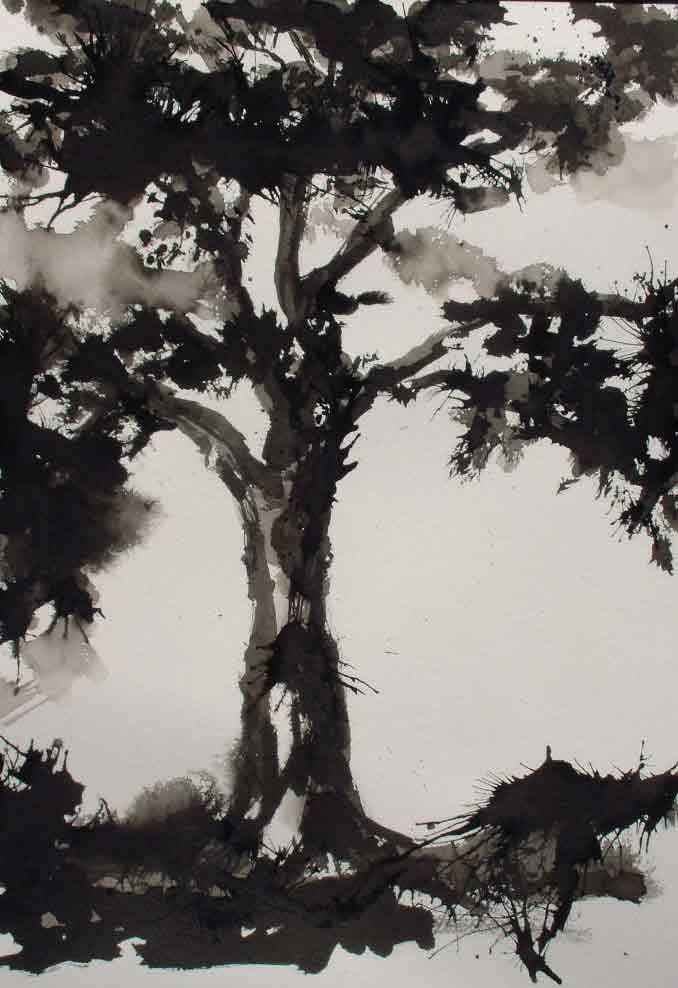 Encre de chine carnet de dessins b n dicte 39 s blog - Dessin arbre chinois ...