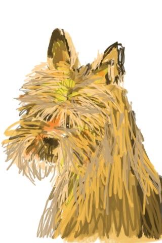 le chien 2