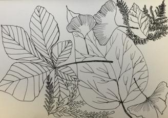 feuilles-ben-3