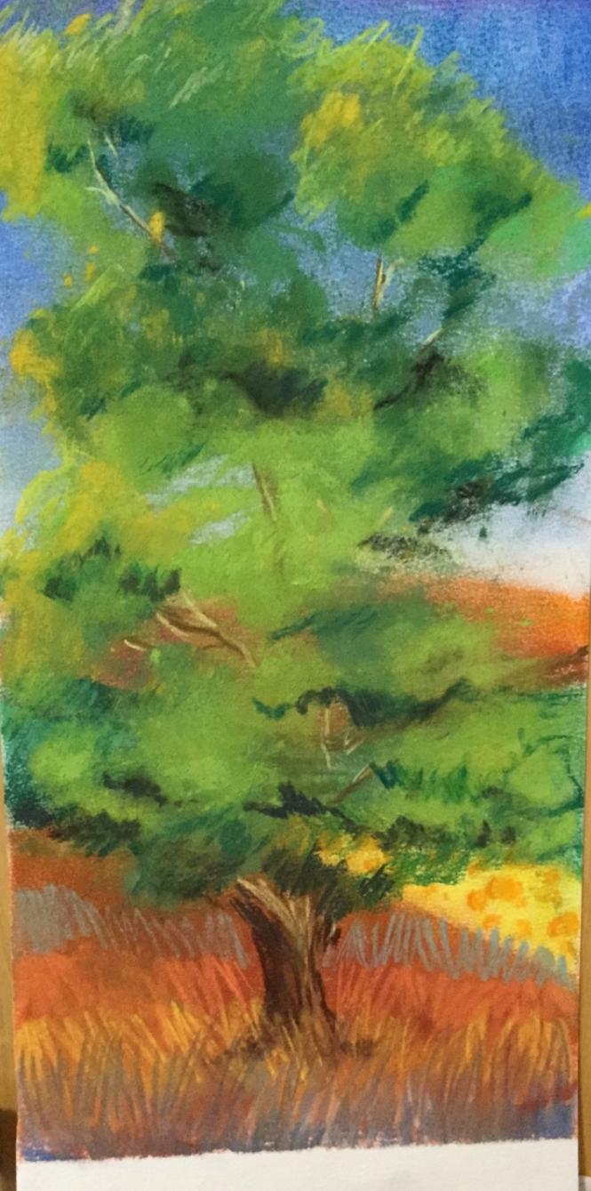 arbre-au-pastel