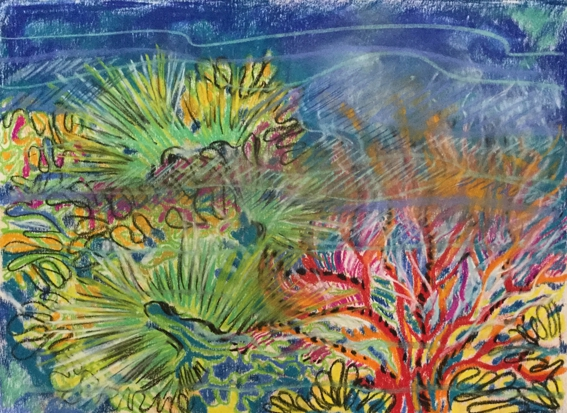 corail-2-pastel